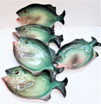 Lot 106 - Set of 6 Vintage Italian Ceramic Fish plates by Dulane - Hand painted 19cm L x 6cm W - 1 with small chip to tail fin
