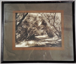 Lot 153 - Artist Unknown Framed c1930s Australian Photograph - Through the Ti-Trees - unsigned - frame size 33x40cm, image size 19x25cm